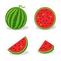set watermeloen stukken en vormen vector