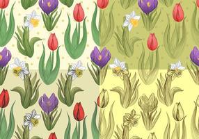 Naadloze Tulp En Daffodil Vector Patronen