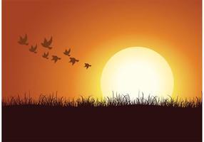 Gratis Vector Kudde Van Vogels Achtergrond