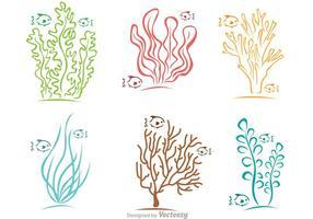 Kleurrijke Koraalrif En Vissen Vector