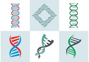 DNA Dubbele Helix Vector Gratis