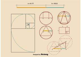 Gouden Ratio Proportions vector