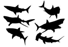 Silhouetvector van haai vector