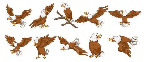 adelaar cartoon set vector