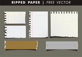 Gescheurd Papier Gratis Vector