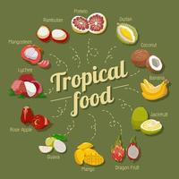 tropisch fruit set vector