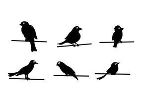 Vogel Op Draad Vector