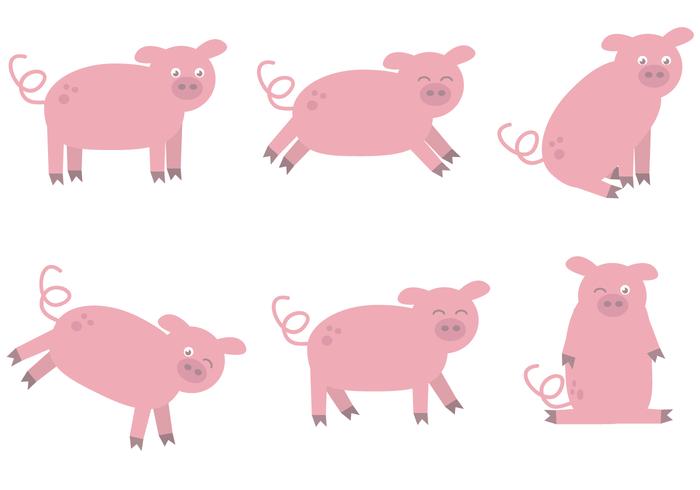 Free Schwein Vektor