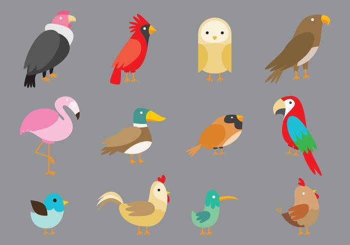 Cartoon Vögel vektor