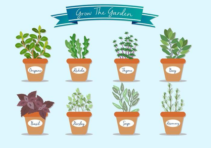 Wachsen Sie die Gartenpflanze-Vektoren vektor