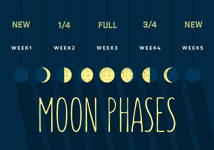 Mond Phase vektor