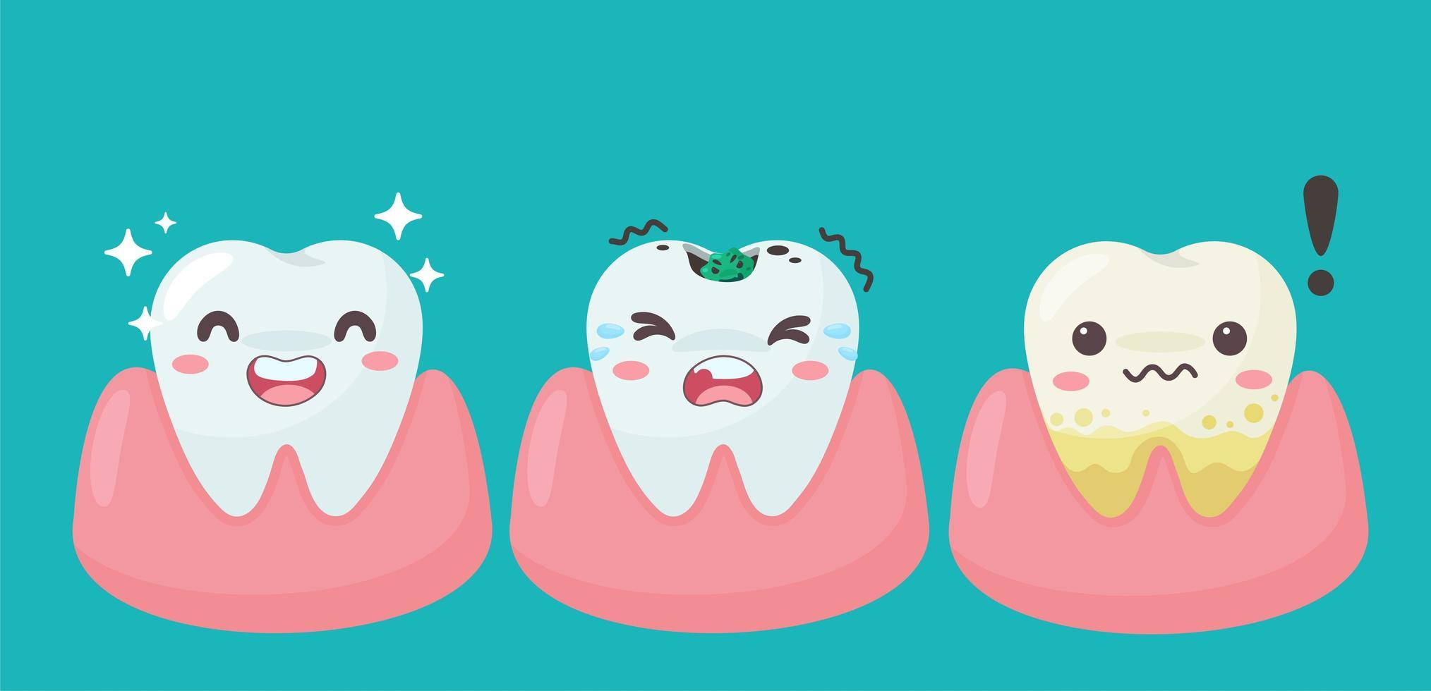 glückliche und verfallene Zähne und Zahnfleisch vektor