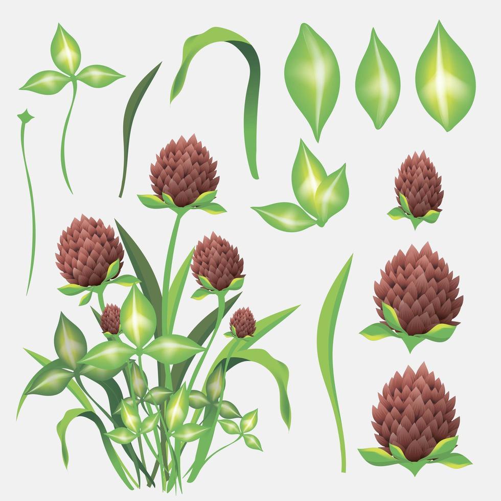 Satz Zeichnung Kleeblätter und Blumen vektor