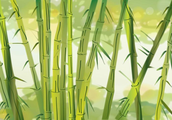 Hijau Bambus vektor