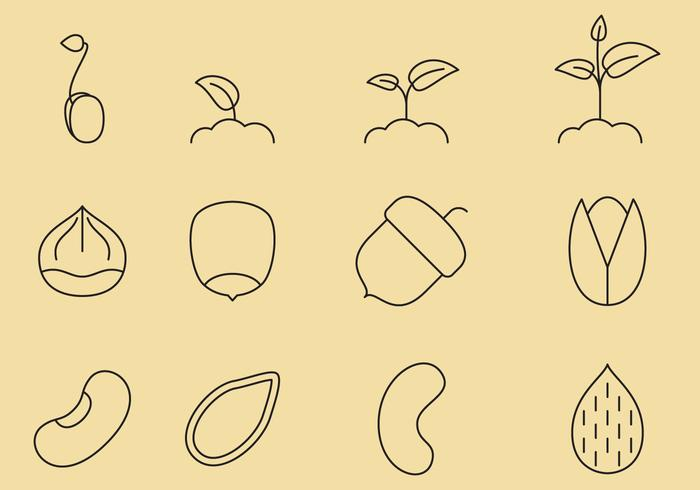 Frön linje ikoner vektor