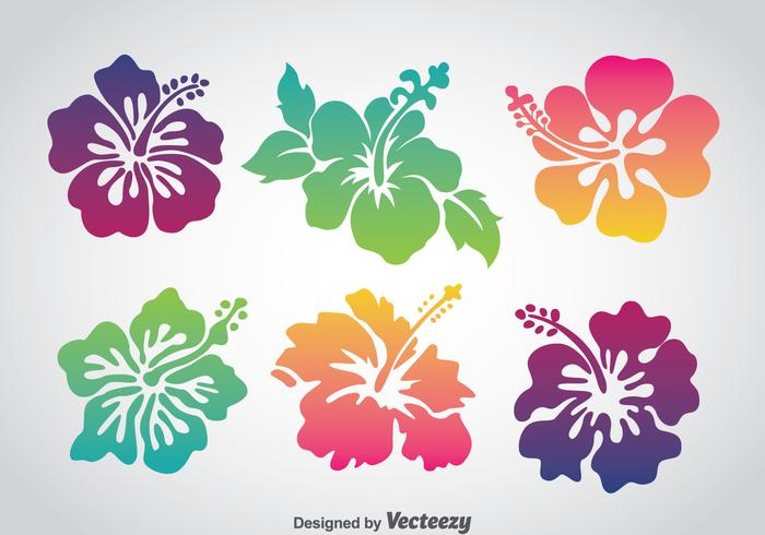 Färgglada Hawaii Flower Vector Set