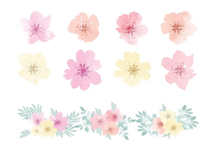 Vector Aquarell Hawaiianische Blumenelemente