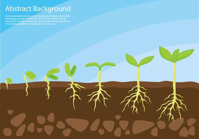 Växt växer upp konceptvektor vektor