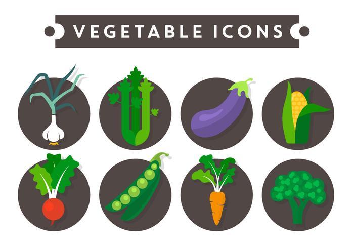Vegetabiliska Vector Ikoner