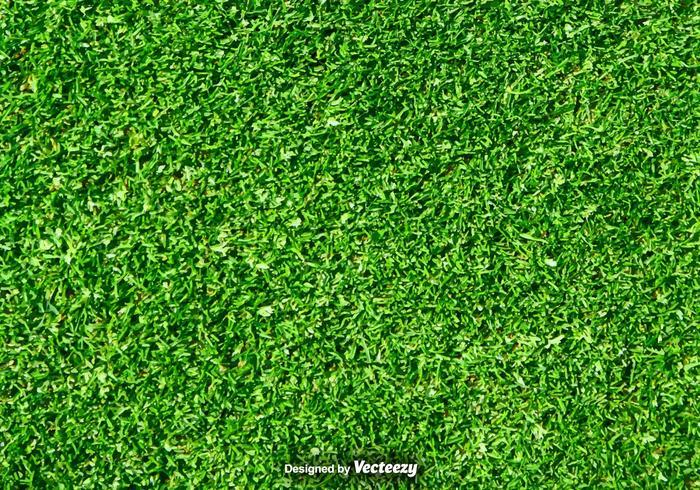 Gräsmatta Natur - Grön Grass Vector Bakgrund