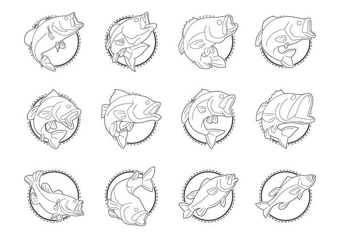 Forellenbarsch-Fisch-Logo-Vektor vektor