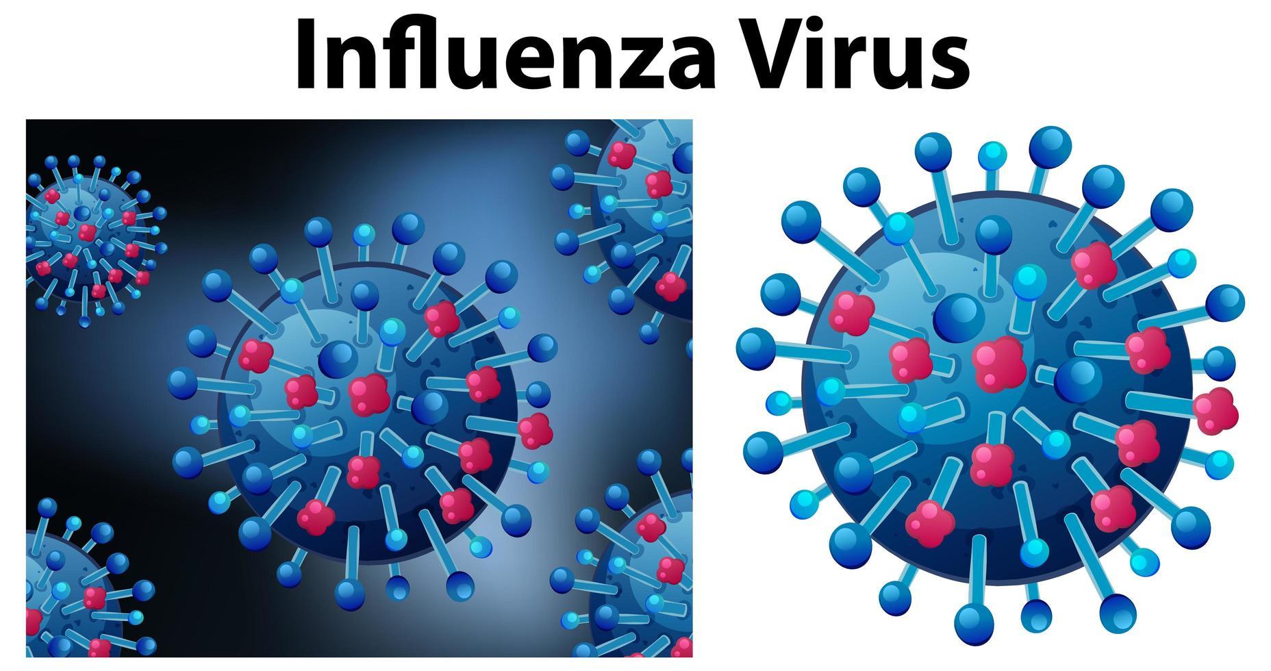 Influenzavirus aus nächster Nähe vektor