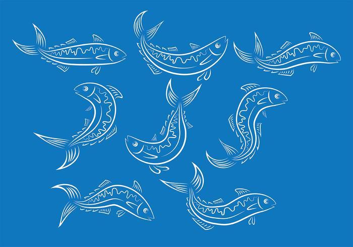 Mackerel Fisch Vektor Ionen