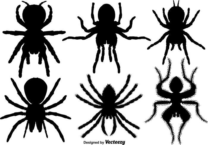 Vektor uppsättning av Tarantula ikoner