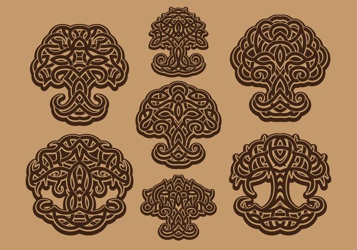 Livets keltiska träd vektor
