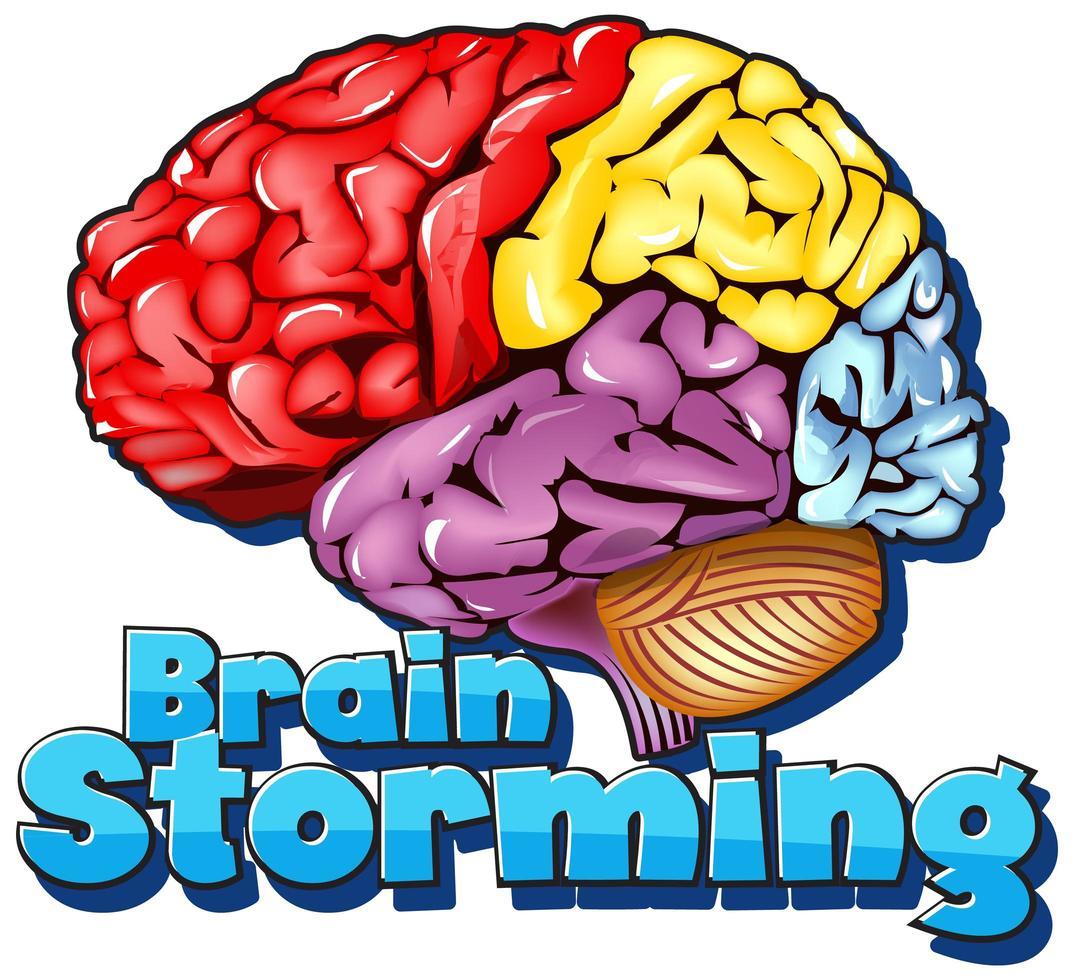 Schriftdesign für Wort-Brainstorming mit buntem Gehirn vektor