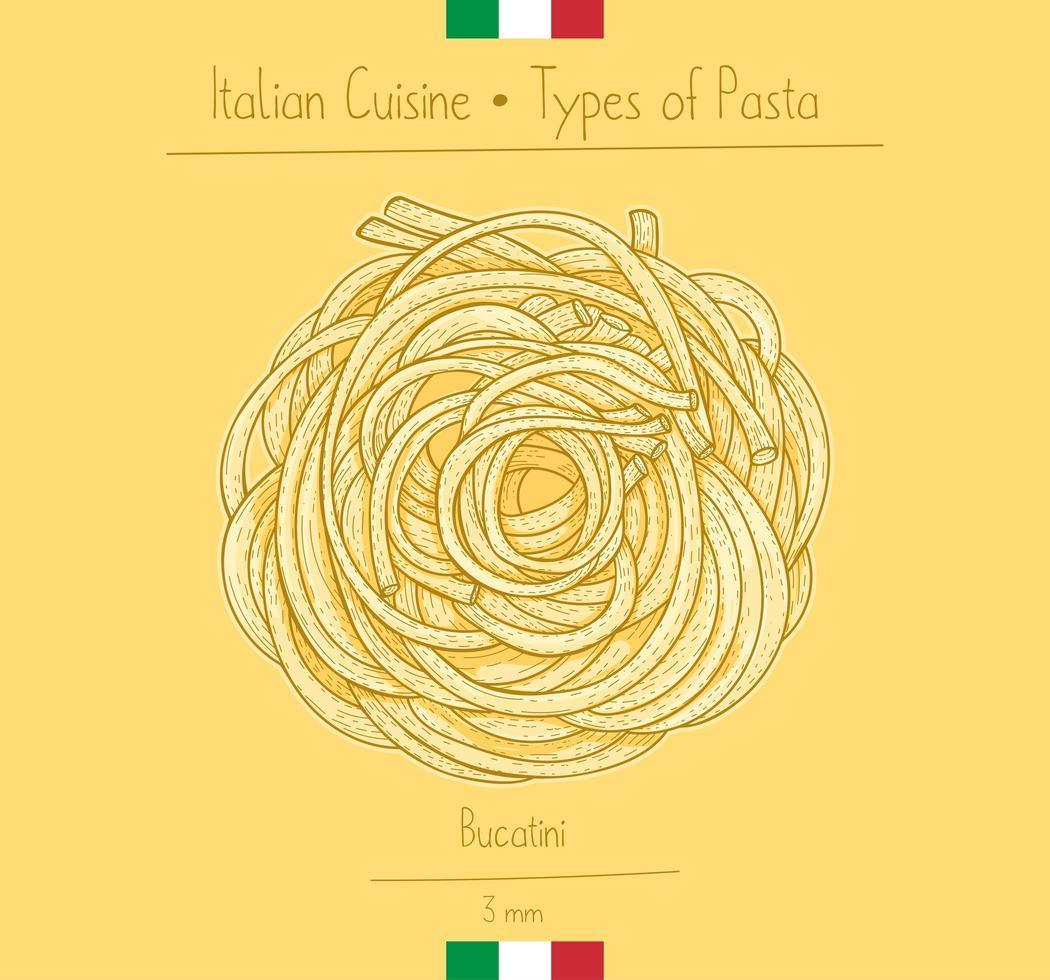 italiensk mat bucatini sphagetti-liknande pasta vektor