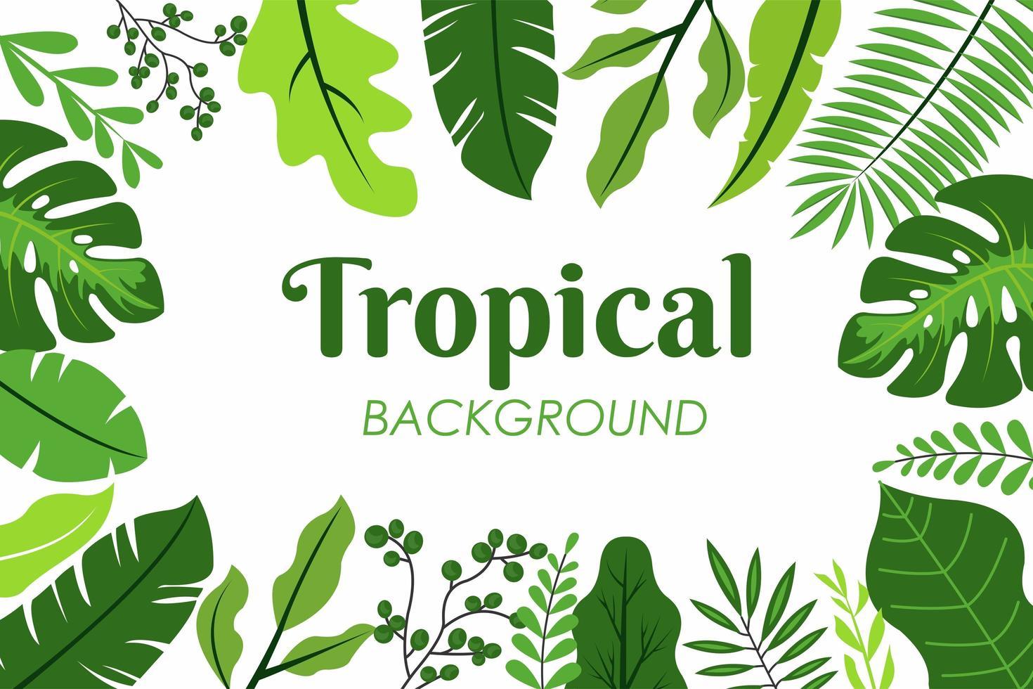 tropische Blätter Rahmen vektor