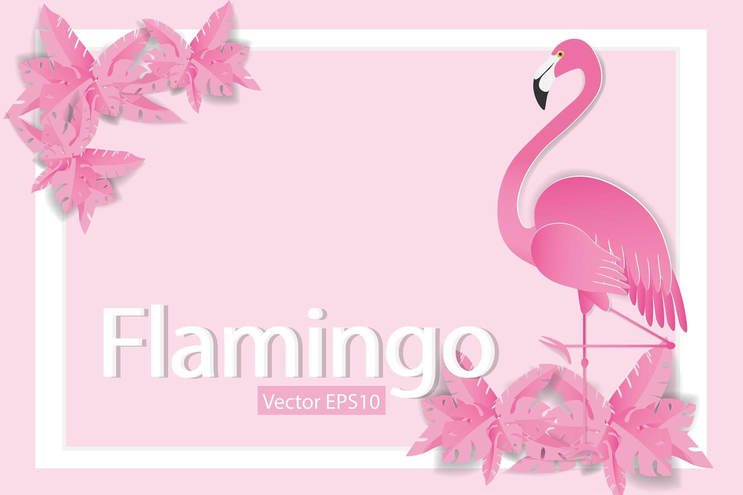 Flamingos auf rosa Hintergrund mit weißem Rahmen vektor