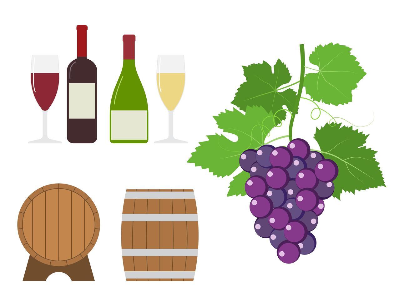 Trauben- und Weinproduktset vektor