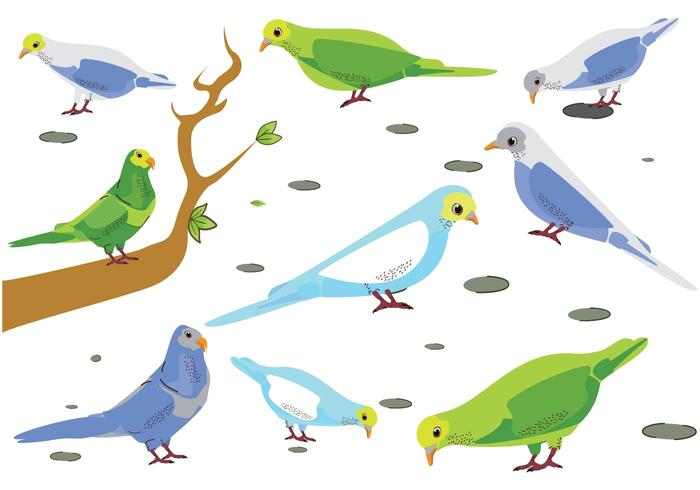 Kostenlose Budgie Vögel Vektor