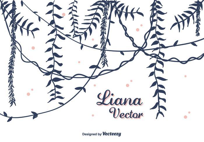 Handdragen Liana Vector