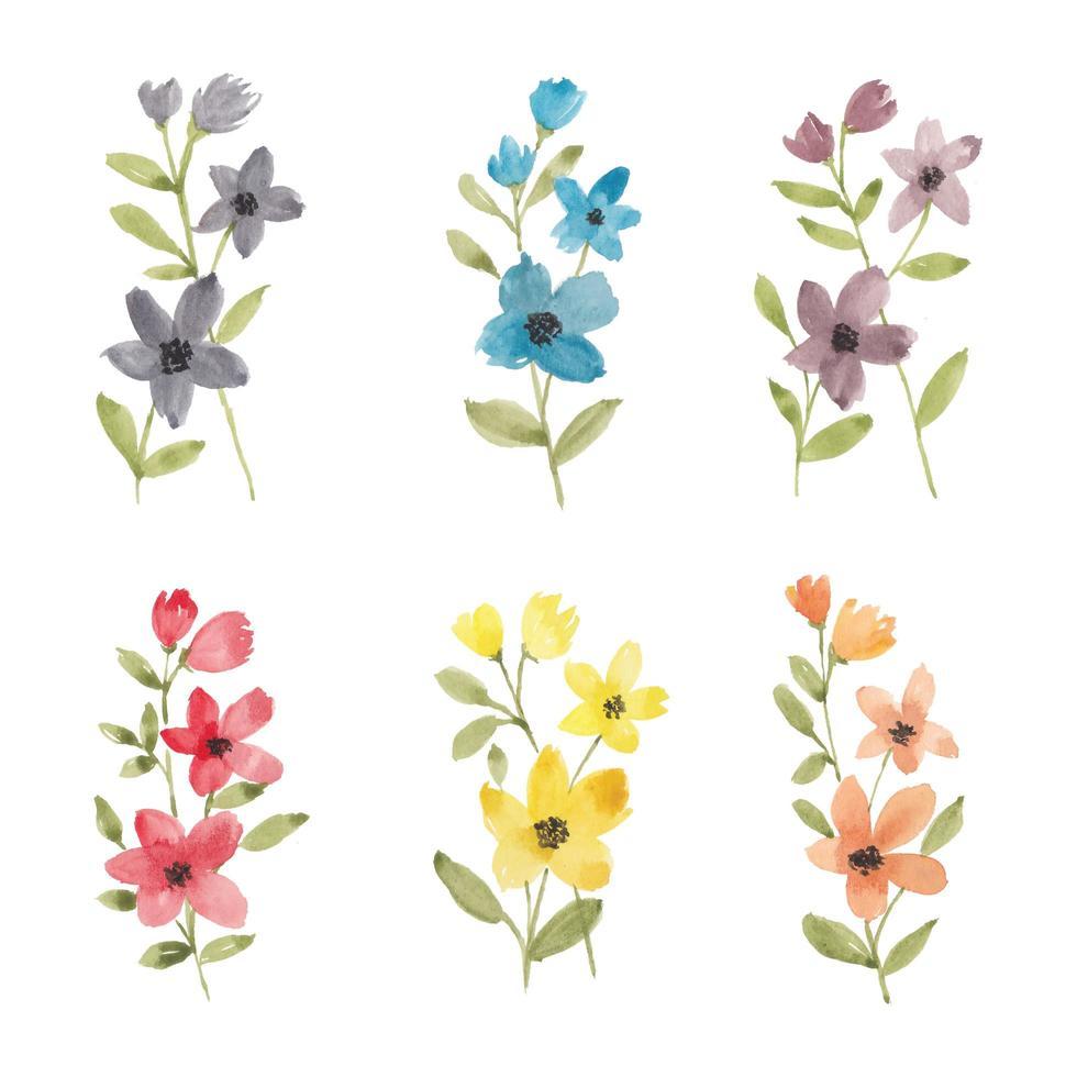 bunte Wildblumenaquarellsammlung vektor