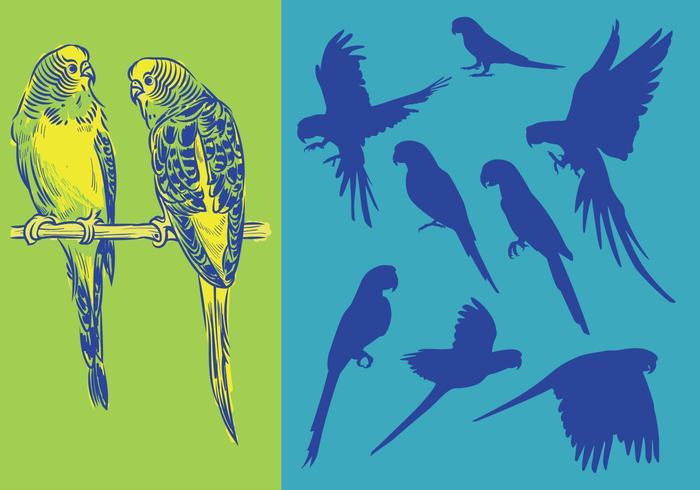 Silhouetten Papageien vektor