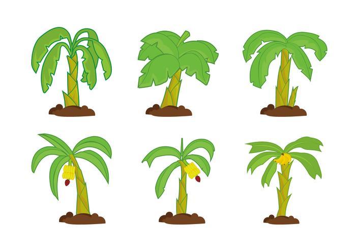 Banan träd vektor pack