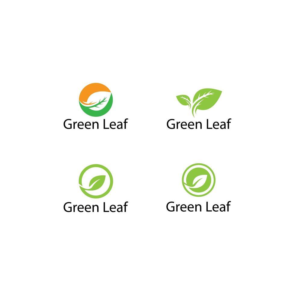 trädblad logotyp malluppsättning vektor