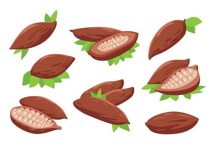 Kostenlose Kakaobohnen Vektor