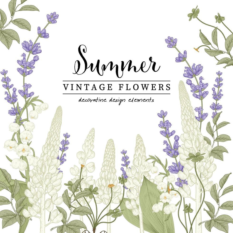 Lavendel und Lupine Zeichnungsset vektor
