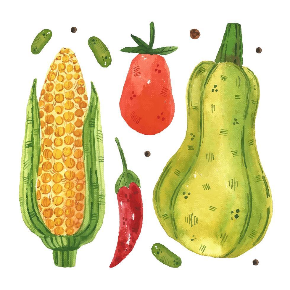 Mais, Tomate, Chili, Erbse, Kürbis vektor
