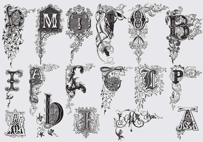 Großbuchstaben mit Acanthus Decor vektor