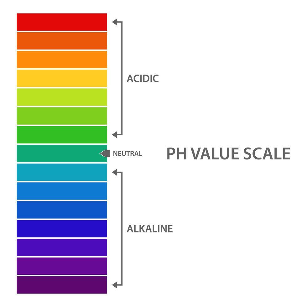 ph-värdeskala vektor