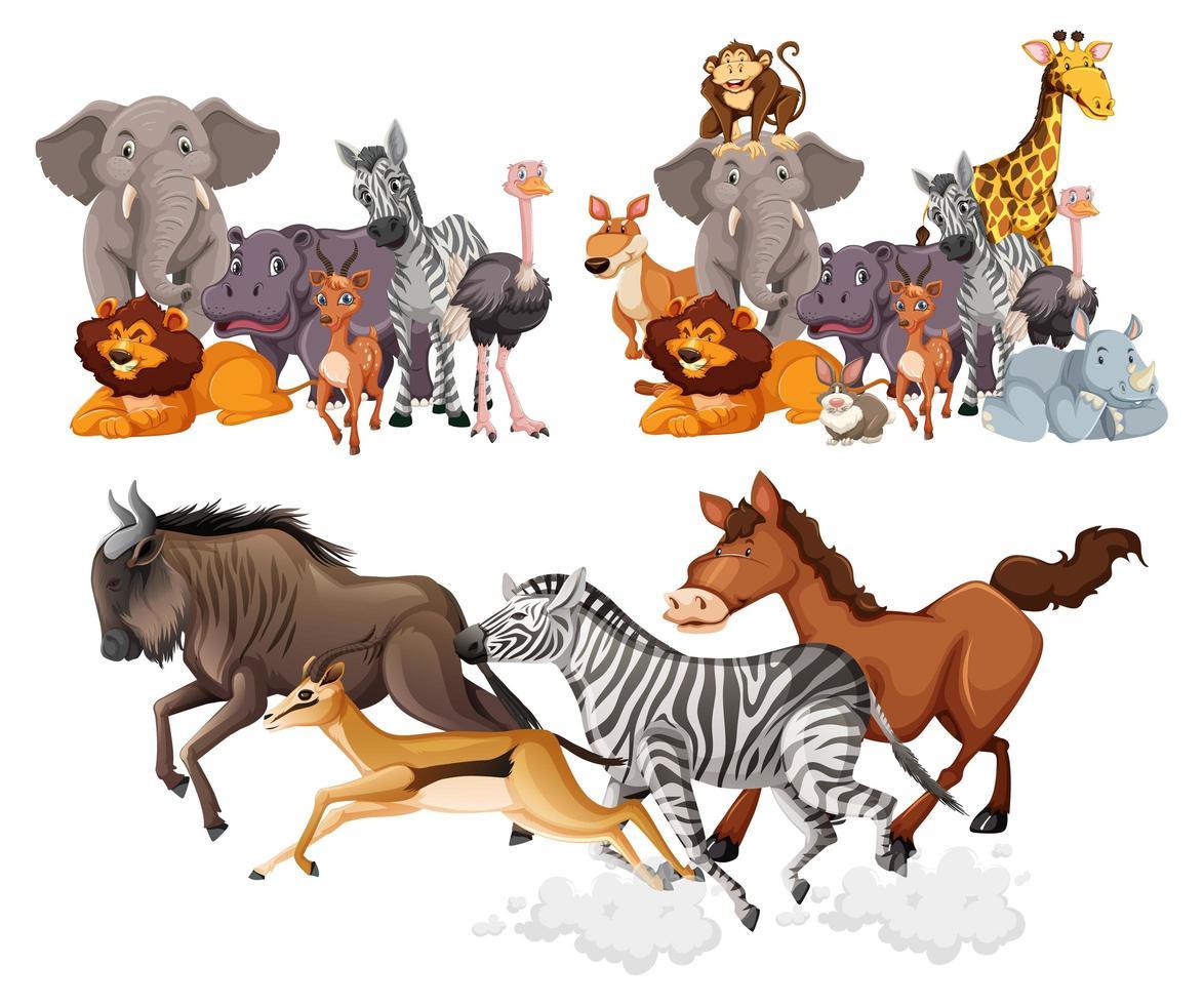 Wildtiergruppen im Cartoon-Stil vektor