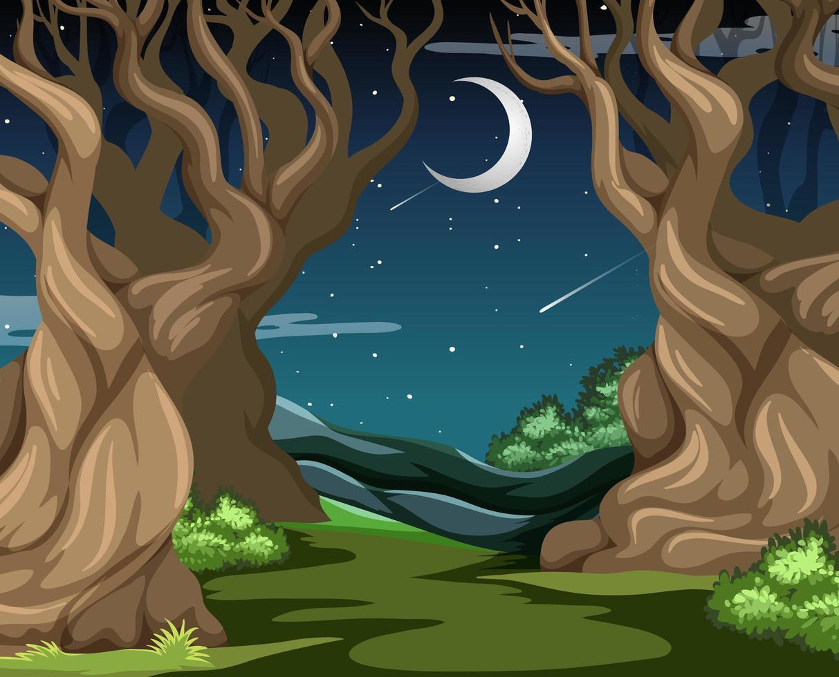dunkler Wald mit großen Bäumen in der Nacht vektor