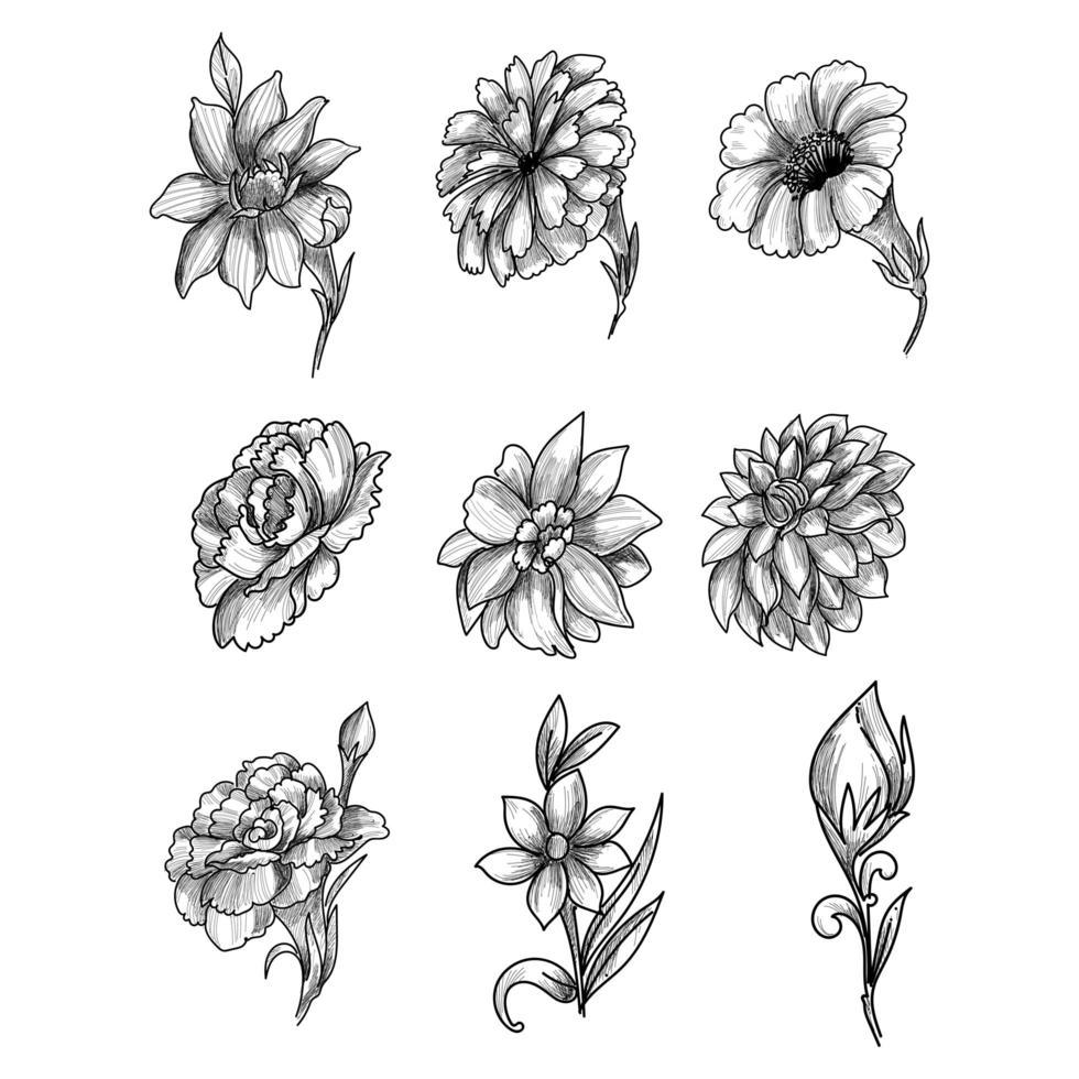 schöne künstlerische Skizze Blumenset vektor