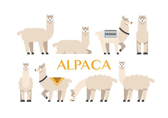 Alpaka-Symbole vektor