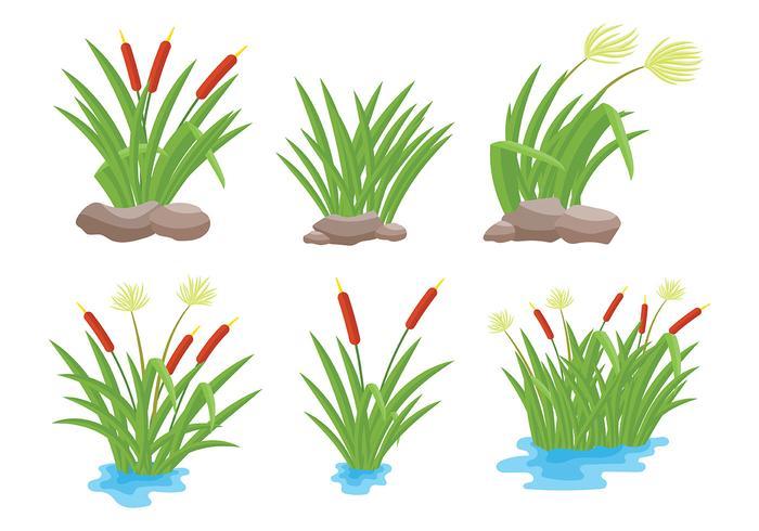 Gratis Reeds Ikoner Vector